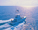 Chartered Fishing Trips
